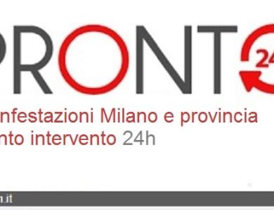 Milano disinfestazioni e derattizzazioni